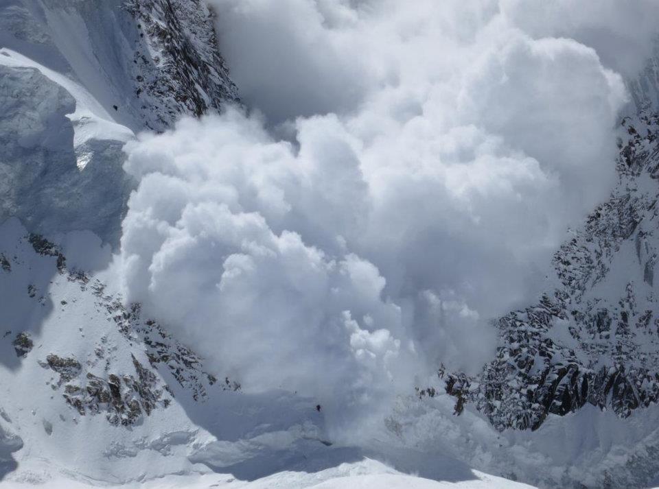 ... Avalanche Latest p...