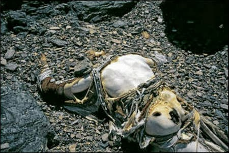 Body of george mallory who died in 1924